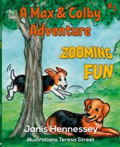 Zooming Fun Book Cover